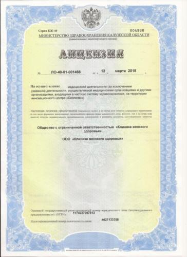 Лицензия (титульный лист)